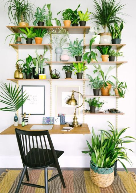 decorar-interioir-plantas-inspiracion-agosto-la-oca.jpg